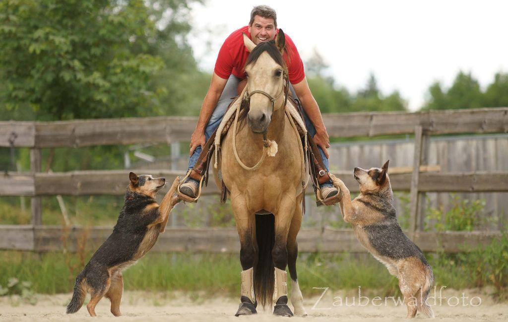 Bernd Hackl Pferdetraining