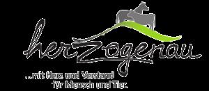 logo_mit_text_small